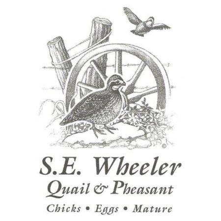SE Wheeler