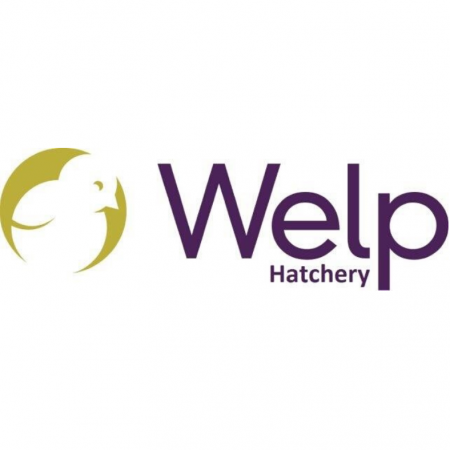 Welp Hatchery (2)